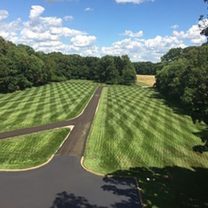 Services - Lawn Perfection Inc